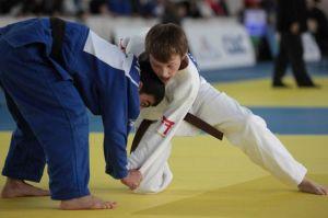 judo-kartinka_300x199_da14438d90f9822dc5f87ebee90afbab